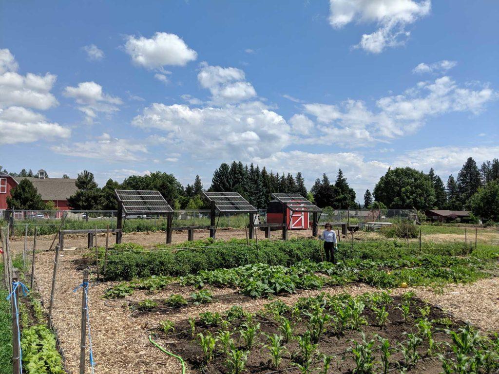 EWU Sustainability Garden