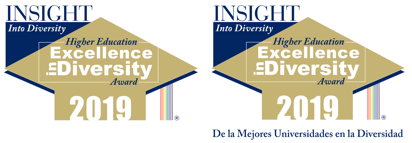Insight into Diversity award badges